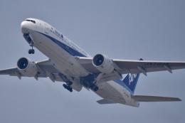 Suzukenさんが、中部国際空港で撮影した全日空 777-281の航空フォト(飛行機 写真・画像)
