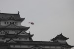 double_licenseさんが、神戸空港で撮影した神戸市航空機動隊 BK117C-2の航空フォト(飛行機 写真・画像)