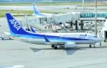 M.Tさんが、那覇空港で撮影した全日空 737-781の航空フォト(飛行機 写真・画像)