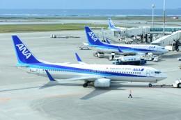 M.Tさんが、那覇空港で撮影した全日空 737-881の航空フォト(飛行機 写真・画像)