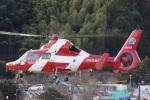 ラムさんが、静岡ヘリポートで撮影した浜松市消防航空隊 AS365N3 Dauphin 2の航空フォト(飛行機 写真・画像)