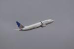 Hiro-hiroさんが、ダニエル・K・イノウエ国際空港で撮影したユナイテッド航空 737-824の航空フォト(飛行機 写真・画像)