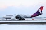 北の熊さんが、新千歳空港で撮影したハワイアン航空 A330-243の航空フォト(飛行機 写真・画像)