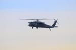みのフォトグラファさんが、名古屋飛行場で撮影した航空自衛隊 UH-60Jの航空フォト(飛行機 写真・画像)