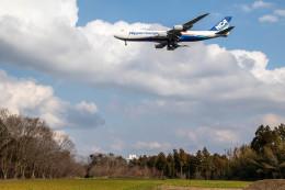 Kaaazさんが、成田国際空港で撮影した日本貨物航空 747-8KZF/SCDの航空フォト(飛行機 写真・画像)