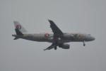 kuro2059さんが、中部国際空港で撮影した中国東方航空 A320-214の航空フォト(飛行機 写真・画像)
