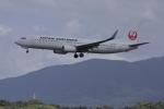 a.mashimaさんが、福岡空港で撮影した日本航空 737-846の航空フォト(飛行機 写真・画像)