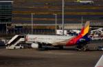 KAZKAZさんが、羽田空港で撮影したアシアナ航空 A321-231の航空フォト(飛行機 写真・画像)
