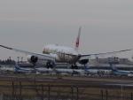 Starfighterさんが、成田国際空港で撮影した日本航空 787-9の航空フォト(飛行機 写真・画像)
