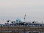 Starfighterさんが、成田国際空港で撮影した全日空 A380-841の航空フォト(飛行機 写真・画像)