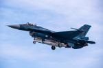 JA56SSさんが、岐阜基地で撮影した航空自衛隊 F-2Aの航空フォト(飛行機 写真・画像)