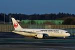 にしやんさんが、成田国際空港で撮影した日本航空 787-8 Dreamlinerの航空フォト(飛行機 写真・画像)