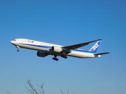 さんまるエアラインさんが、成田国際空港で撮影した全日空 777-381/ERの航空フォト(飛行機 写真・画像)