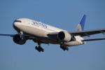 torukutune203さんが、成田国際空港で撮影したユナイテッド航空 777-224/ERの航空フォト(飛行機 写真・画像)