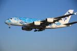 torukutune203さんが、成田国際空港で撮影した全日空 A380-841の航空フォト(飛行機 写真・画像)