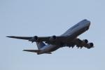 ANA744Foreverさんが、羽田空港で撮影したルフトハンザドイツ航空 747-830の航空フォト(飛行機 写真・画像)