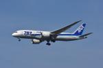 ポン太さんが、成田国際空港で撮影した全日空 787-8 Dreamlinerの航空フォト(飛行機 写真・画像)