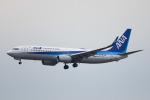 ひよっこさんが、福岡空港で撮影した全日空 737-8ALの航空フォト(飛行機 写真・画像)