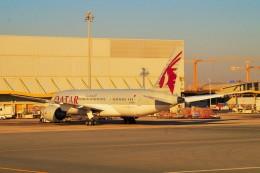 ちっとろむさんが、ドーハ・ハマド国際空港で撮影したカタール航空 787-8 Dreamlinerの航空フォト(飛行機 写真・画像)