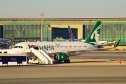 ちっとろむさんが、ドーハ・ハマド国際空港で撮影したカタール航空 A320-214の航空フォト(飛行機 写真・画像)