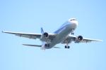 エアさんが、羽田空港で撮影した全日空 767-381の航空フォト(飛行機 写真・画像)