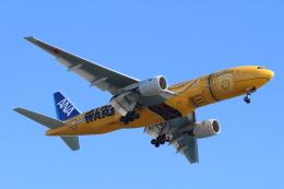 エアさんが、羽田空港で撮影した全日空 777-281/ERの航空フォト(飛行機 写真・画像)