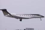 Mr.boneさんが、成田国際空港で撮影したウィルミントン・トラスト・カンパニー G650 (G-VI)の航空フォト(飛行機 写真・画像)