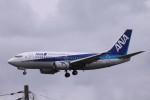 Mr.boneさんが、成田国際空港で撮影した全日空 737-54Kの航空フォト(飛行機 写真・画像)