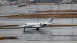 ハム太郎。さんが、羽田空港で撮影したスカイサービス・ビジネス・アビエーション Challenger 600の航空フォト(飛行機 写真・画像)