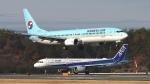 撮り撮り人さんが、岡山空港で撮影した大韓航空 737-9B5の航空フォト(飛行機 写真・画像)