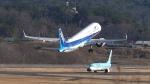 撮り撮り人さんが、岡山空港で撮影した全日空 A321-272Nの航空フォト(飛行機 写真・画像)