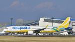 パンダさんが、成田国際空港で撮影したセブパシフィック航空 A321-271NXの航空フォト(飛行機 写真・画像)