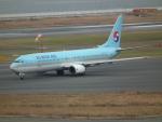 ヒコーキグモさんが、関西国際空港で撮影した大韓航空 737-9B5の航空フォト(飛行機 写真・画像)