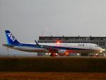 yutopさんが、米子空港で撮影した全日空 A321-211の航空フォト(飛行機 写真・画像)