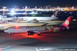 kina309さんが、羽田空港で撮影した吉祥航空 787-9の航空フォト(飛行機 写真・画像)