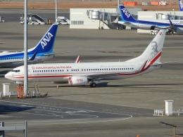 チャレンジャーさんが、羽田空港で撮影したポーランド政府 737-86Xの航空フォト(飛行機 写真・画像)