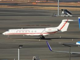 チャレンジャーさんが、羽田空港で撮影したポーランド政府 G500/G550 (G-V)の航空フォト(飛行機 写真・画像)