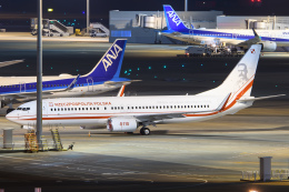 kuraykiさんが、羽田空港で撮影したポーランド政府 737-86Xの航空フォト(飛行機 写真・画像)