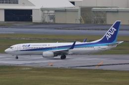 camelliaさんが、那覇空港で撮影した全日空 737-881の航空フォト(飛行機 写真・画像)