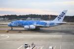 09RJNH27さんが、成田国際空港で撮影した全日空 A380-841の航空フォト(飛行機 写真・画像)