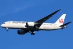 まえちんさんが、成田国際空港で撮影した日本航空 787-8 Dreamlinerの航空フォト(飛行機 写真・画像)