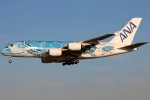 まえちんさんが、成田国際空港で撮影した全日空 A380-841の航空フォト(飛行機 写真・画像)