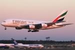 まえちんさんが、成田国際空港で撮影したエミレーツ航空 A380-861の航空フォト(飛行機 写真・画像)