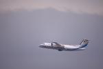 青いT-MAさんが、羽田空港で撮影した海上保安庁 DHC-8-315Q MPAの航空フォト(飛行機 写真・画像)