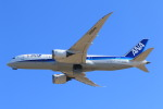 rokko2000さんが、成田国際空港で撮影した全日空 787-8 Dreamlinerの航空フォト(飛行機 写真・画像)