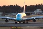 rokko2000さんが、成田国際空港で撮影した全日空 A380-841の航空フォト(飛行機 写真・画像)