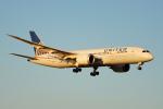 ちゃぽんさんが、成田国際空港で撮影したユナイテッド航空 787-8 Dreamlinerの航空フォト(飛行機 写真・画像)