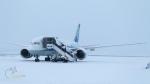 うみBOSEさんが、新千歳空港で撮影した全日空 787-8 Dreamlinerの航空フォト(飛行機 写真・画像)