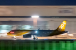 こうきさんが、成田国際空港で撮影したスクート A320-232の航空フォト(飛行機 写真・画像)