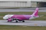 camelliaさんが、那覇空港で撮影したピーチ A320-214の航空フォト(飛行機 写真・画像)